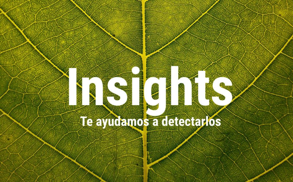 insights3
