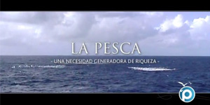 Vídeo Pevaeche
